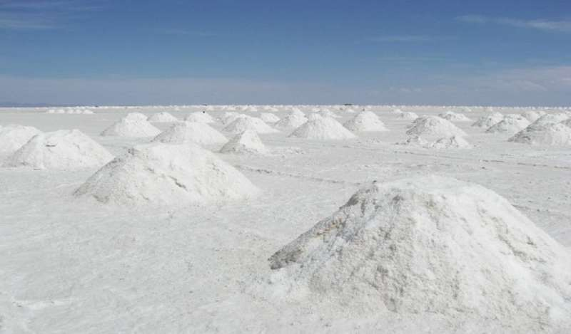 Bolivia se asocia con firma china para desarrollar millonarios proyectos de litio
