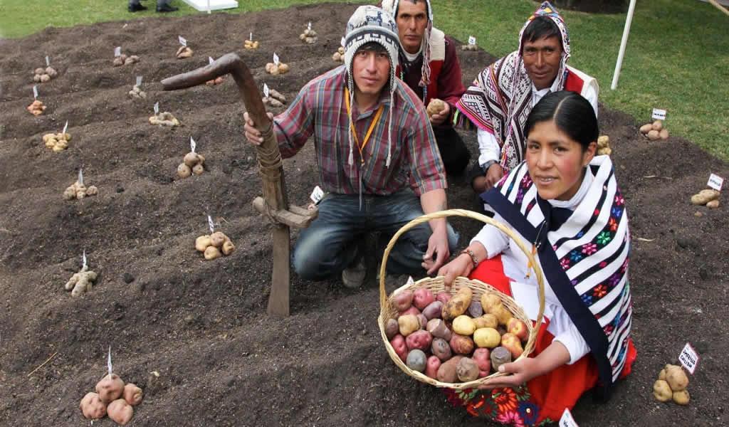 180 emprendimientos de la sierra peruana postulan a premio de innovación social Perumin Inspira