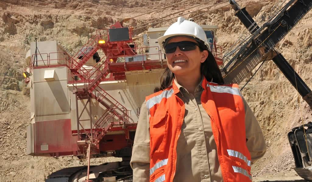 """WIM sobre los nuevos protocolos: """"La seguridad está en el ADN de la minería"""""""