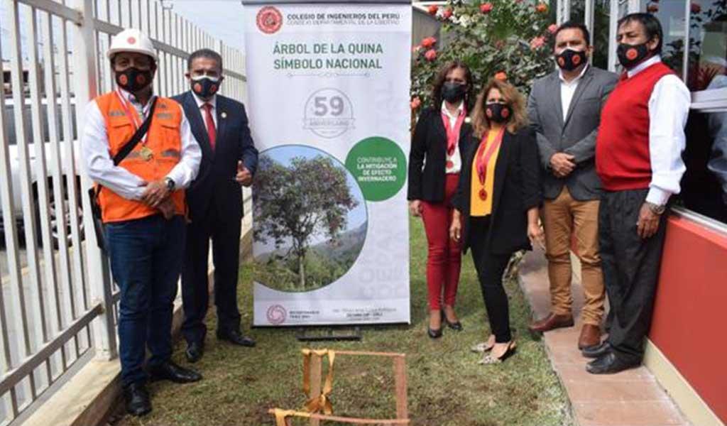 """Plantan árbol de la quina por el """"Día del Ingeniero Peruano"""" en La Libertad"""